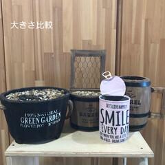 リメ缶/小石/プランター/リアル錆/多肉準備/DIY 多肉ちゃんを迎える前の準備‼️ やっぱり…(8枚目)