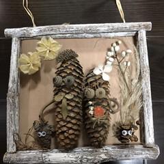 家族写真/ドライ/松ぼっくり/木の実/端材/DIY/... 家族写真📸 ちょっとごちゃごちゃかなー …