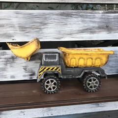 多肉/働く車👆/DIY/100均/ニトリ/ダイソー ダイソーの働く車おもちゃ… 働けなくしま…