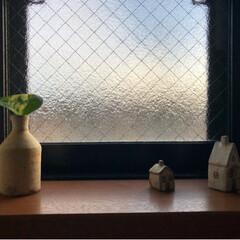 お家/窓/トイレ雑貨/観葉植物/佐藤敬/益子焼/... 実はここにもポトスくん 🌱 そして、 今…