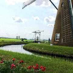 幸せ/自然/素敵/癒し/空/風車/... ある時の千葉県!