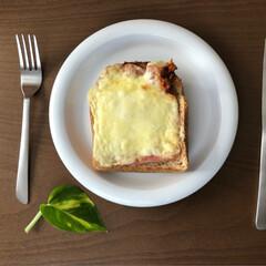 ビストロオーブン/オーブン/気まぐれランチ/ポトス/パン/おうちご飯/... 手作りクロックマダム 🍳🌿 新しく購入し…