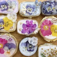 ミモザ/紫陽花ドライ/記録/写真/BOTANICAL/彩りのある暮し/... 彩り豊かに、、、お花のアクセサリーケース…