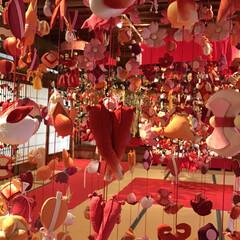酒田山王クラブ/雛祭り/傘福 こんにちは😃 🍓グッチさんの吊るしを見て…(3枚目)