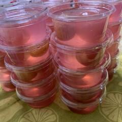 季節限定/伊豆錦 大粒葡萄のゼリー作りました😍  40個で…
