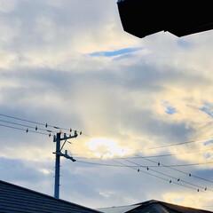 風景/景色/夕方/昨日の空/暮らし/フォロー大歓迎 昨日の空🤩 家の2階からの撮影だったから…