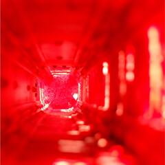 吸いこまれそう/行楽日和/おでかけスポット/秋のお出かけ/赤が好き/インスタ映え/... 東京タワーのエレベーターで上に上がる時の…