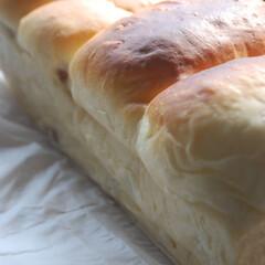 ウインナー巻き巻き/ウインナーパン/ホームベーカリー/パン作り/手作りパン/おうち時間/... ウインナーパンを作りました。 たくさんウ…(2枚目)