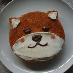 デコペン/クリームチーズ/柴犬パン/いぬパン/犬パン/ねこパン使用/... いぬパンを作りました。 もらったねこ?く…