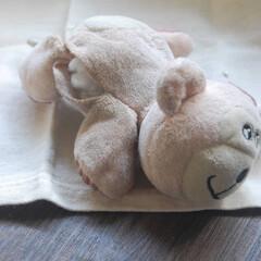 裁縫/おもちゃ修理/おうち時間 愛犬のお気に入りのオモチャを修理しました…