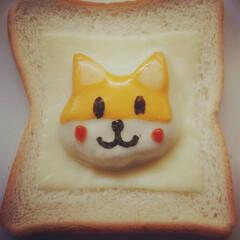 アイデア/エンボストースト作り方/エンボストースト/柴犬トースト/朝ごパン/朝ごはん/... 今話題のエンボストーストを作りました。 …