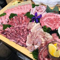牛肉/盛り合わせ/食べ物/豪華/満腹/綺麗/... 焼肉の盛り豪華に