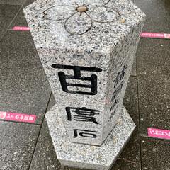 千葉県/御朱印/櫻木神社 櫻木神社🌸⛩🙏(3枚目)