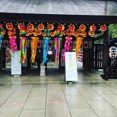 千葉県/御朱印/櫻木神社 櫻木神社🌸⛩🙏(2枚目)