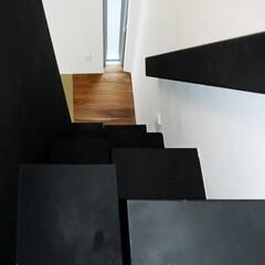 住宅/内観/階段/互い違い階段 <物見台への階段:Shipな家>(1枚目)