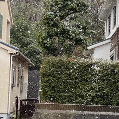 寒い/雪 おはようございます😃 朝は雨でしたが、雪…