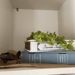 少しづつ秋が近づいてきてますね/手作り/ハロウィン/北欧雑貨/IKEA/リビング/... 備え付けの棚があるんですけど、ずっと空っ…