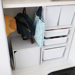 カラーボックス 収納ボックス 収納ケース 棚 扉付き 1段 おしゃれ お洒落 オシャレ 北欧 キューブボックス 収納ラック | アイリスオーヤマ(カラー、キューブボックス)を使ったクチコミ「4月から年少さんの娘。 娘が1人でお支度…」