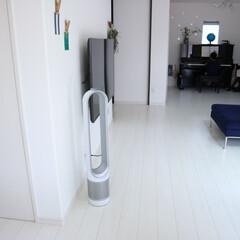 ダイソン ピュアクール Dyson Pure Cool TP00 WS(空気清浄機)を使ったクチコミ「やっと!扇風機を出しました! ダイソンの…」