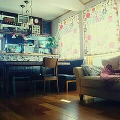 吊り棚DIY/ハーレクイン/カーテン/父の作品/陶芸作品/クローバー/... 久しぶりの平日休み。 子供達が帰ってくる…
