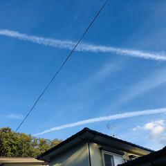 梅雨の晴れ間/飛行機雲/青空 連投ですみません(⋆ᵕᴗᵕ⋆).+*ペ…