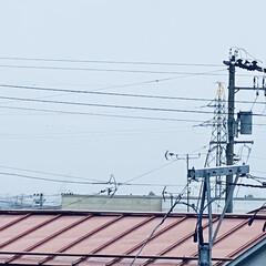 霧/寒い/太陽/やませ こんにちは🎶 今日も🌞にはお目にかかれま…(3枚目)