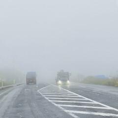 牡蠣/やませ/ラーメン/お出かけ こんにちは🎶 今日は最悪の天気、土砂降り…(3枚目)