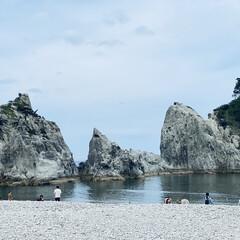 カモメ/宮古/浄土ヶ浜/三陸復興国立公園/お出かけ おはようございます。🎶  今日は朝から肌…(3枚目)