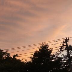 夕焼け こんばんは🌃 夕焼け久しぶりに見れました…
