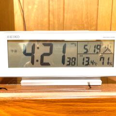 最高気温/寒い/花びら/八重桜/雨 こんにちはー👸  今日は一日雨降りです(…