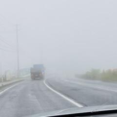 牡蠣/やませ/ラーメン/お出かけ こんにちは🎶 今日は最悪の天気、土砂降り…(2枚目)