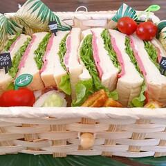 100均/ランチボックス/お弁当/かご/セリア/サンドイッチ/... おはようございます 賞味期限が近いビアハ…