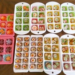 飾り切り/お弁当レシピ/お弁当アイデア/冷凍保存/お弁当おかず/お弁当/... 朝のお弁当作りが楽になるように 作り置き…
