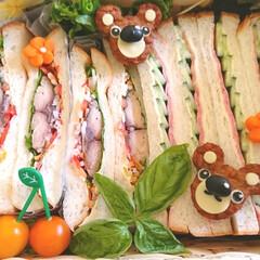 くまさん/デコ弁/キャラ弁/ランチボックス/可愛い/サンドイッチ/... おはようございます 昨日友人宅のランチに…(2枚目)
