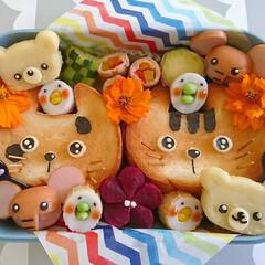 ねこちゃん/くまさん/サンドイッチ/デコ弁/キャラ弁/可愛い/... こんにちは(^^)  にぎやか動物園弁当…