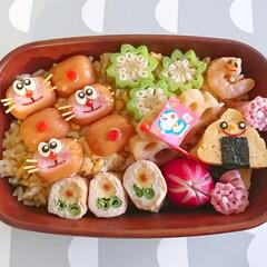 可愛い/飾り切り/星型/オクラ/ドラえもん/デコ弁/... こんにちは(^^) 今日のお弁当は ドラ…