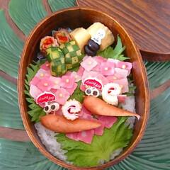 お弁当/梅雨を楽しむ/曲げわっぱ/キャラ弁/わっぱ弁当/おうちごはん おはようございます(^o^) 今日のお弁…