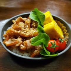 料理/お弁当 お久しぶりです(*' ')*, ,)✨ヘ…(10枚目)