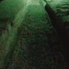 雪遊び/ソリ いい年こいて夜な夜な 友達とソリ遊びw …