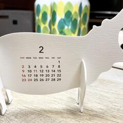 グッドモーニング 2020年 カレンダー 卓上 ズー 0599(その他オフィス家具)を使ったクチコミ「今日から2月 めくり忘れたカレンダーはあ…」