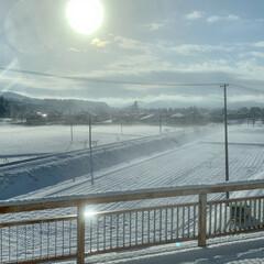 学びの時間/雪化粧/高速バス 本日は高速バスで仙台へ🚍 雪の朝、7分遅…