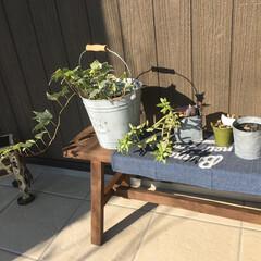エイハウス/秋田安くていい暮らす家/住まい/暮らし/フォロー大歓迎 こんなグリーン楽しめる余裕のある家づくり…