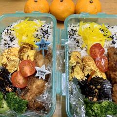 エイハウス/今日のお弁当/秋田安くていい暮らす家づくり 20191115 おはようございます。 …