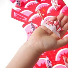 端午の節句/五月人形/お祝い/鯉のぼり/子どもの日/おもてなし/...