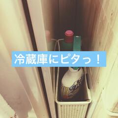 洗剤収納/強力磁石/隙間収納/アイディア投稿/ダイソー/100均/... 「キッチン周りのお掃除洗剤」  すぐにパ…