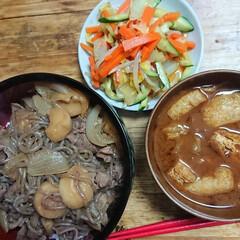 ごはん/おうちごはん 今夜は、牛丼と白菜と油揚げ、しめじの味噌…