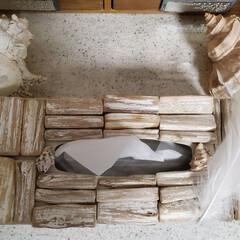 ティッシュボックス/リメイク/流木 流木のティッシュbox作りました✿*:・゚