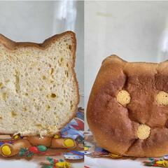 紙袋/猫/食パン 食パンフェアでゲットした猫食パン🐱 表面…