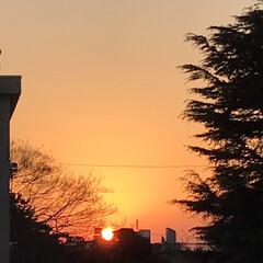 夕焼け/夕陽/夕暮れ/窓からの眺め/癒し 今日の夕焼けも 綺麗でした🌇 お天気下り…(1枚目)