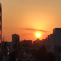 空/夕陽/夕焼け/夕陽の風景/師走 今空  16:15 真っ赤な夕陽 撮れま…